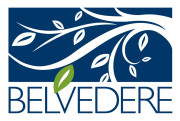 Belvedere Charlottesville Neighborhood Real Estate